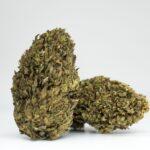 Buy Blue Breeze CBD flowers online from CHERRYWIFARM®