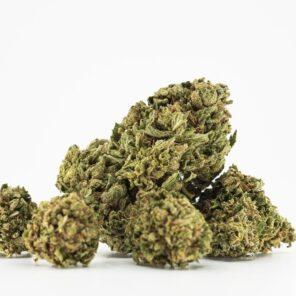 Buy CBD cannabis online from CHERRYWIFARM®- CBD flowers wholesale in Europe