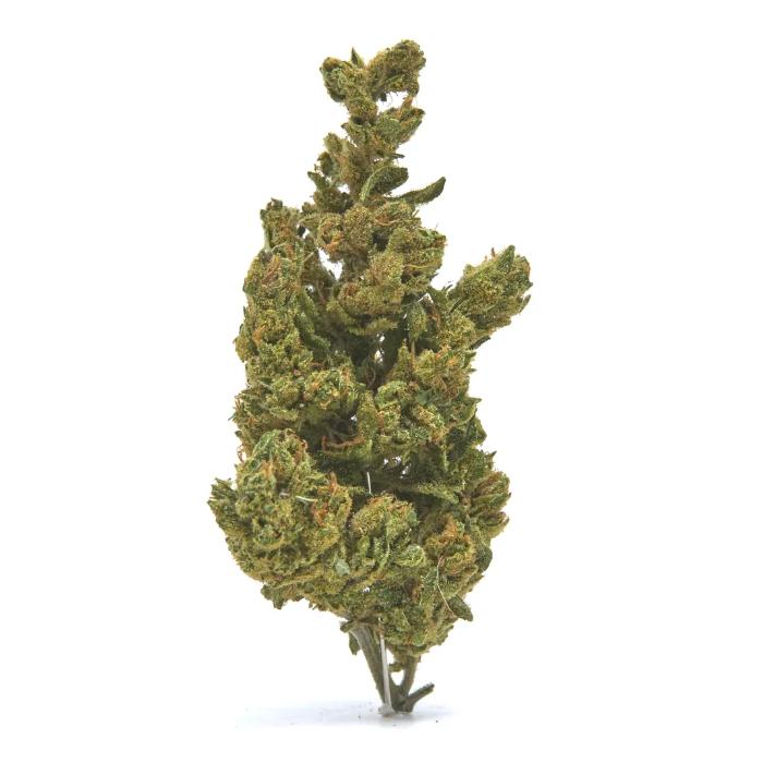 bulk hemp flower